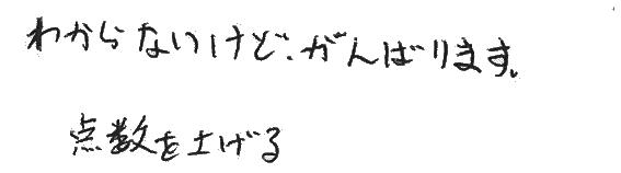 ヨシキ君(三島市)からの口コミ